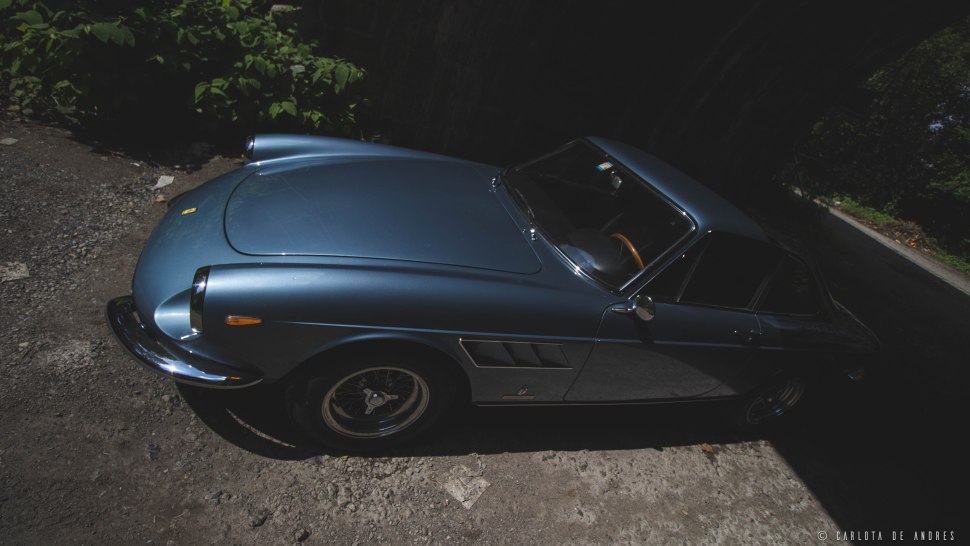 collectorscarworld photography charlieandres img 3261 - Ferrari 330 GTC